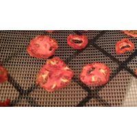 Tomato Dryer