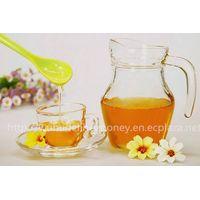 Pure Vitex Honey