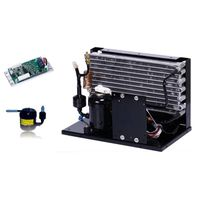 DC 12V 24V 48V mobile and compact condensing unit for cooling and refrigeration