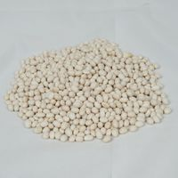Ethiopian Origin White Pea Bean
