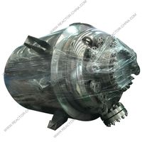 SS316L GMP stainless steel reactor