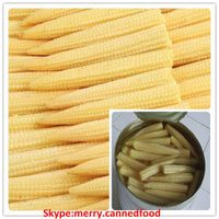 Canned Whole Baby Corn