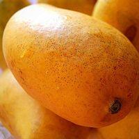 Fresh Mangos thumbnail image