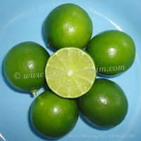 LIME SEEDLESS ORIGIN VIETNAM |Whatsapp No. +84 903 887 753 thumbnail image