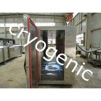 Cryogenic quick freezer thumbnail image