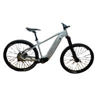 Bafang 250/500W MID Drive E-Bike Frame 29er Electric Bike