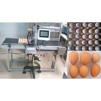 Egg Spurt The Code Machine Inkjet Printer 5 Nozzles