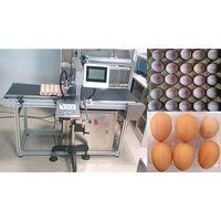 Egg Spurt The Code Machine Inkjet Printer 5 Nozzles