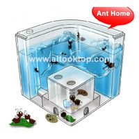 Novelty Ant Home = Ant Villa + Ant Farm ecological toys ants home kids Science Toys children educati