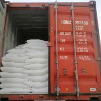 Limestone Powder 250mesh for Fish Feed Ca min 38%