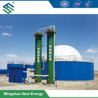 Dry Desulfurization System / Equipment for Removal of Hydrogen Sulfide