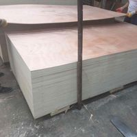 factory direct sale packing plywood for pallet thumbnail image