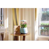 NASO decorative flower vase with -selfwatering system led lighting system