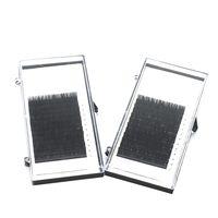Volume eyelash extensions 2d 3d 4d 5d 6d silk mink eyelash
