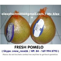 FRESH POMELO/ SWEET POMELO/ GRAPEFRUIT/ NAMROI POMELO/ POMELO PINK/CITRUS OSB