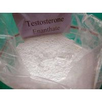 Legal Anabolic Steroids Testosterone Enanthate Purity above 99% For Muscle Growth