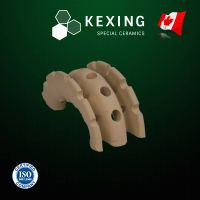 "Ceramic Super Saddle Ring Random Packing Media 1"" 1.5"" 2"" 3"""