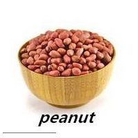 Best Price Peanut Supplier From China