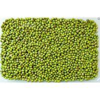 looking for green mung bean thumbnail image