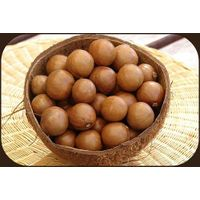 Macadamia Nuts Best Price