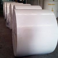 PE Coated Paper for Food Packaging
