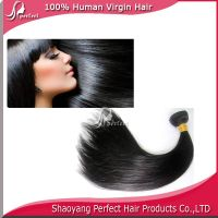 Top Quality 100% Virgin Brazilian Nature Wave Human Hair Weft