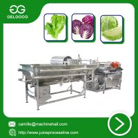 Vortex Type Vegetable Washing Machine New Type Fruit washing machine thumbnail image