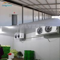 Cold storage for vegetables, cold room for potato