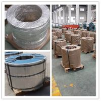 China high quality tinplate coil