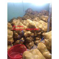 Cheap semi husked coconut