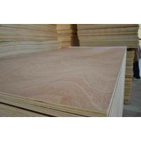 okoume veneer faced plywood thumbnail image