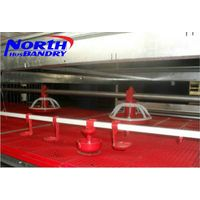 Best Quality Automatic Poultry feeder and drinker poultry farming equipment for sale thumbnail image