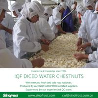 IQF Frozen Diced Water Chestnuts/Frozen IQF Frozen Water Chestnuts Dices thumbnail image