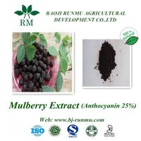Free sample natural Mulberry extract anthocyanidins 5%-25%
