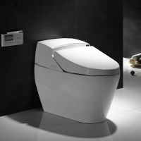 procelain bathroom smart toilet with electronic bidet toilet seat