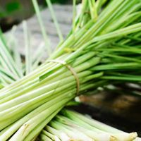 100% lemongrass fragrance oil for sale
