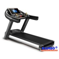 """RB-702S 7"""" LED Blue Screen Single Function with Ascension Treadmill"""