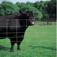 cattle fence thumbnail image