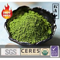 Best Matcha Green Tea Powder