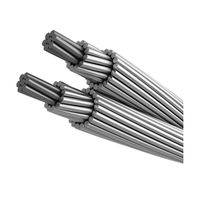 ACSR Wire Bare Conductor ACSR Cable High Voltage Cable for Power Transmission