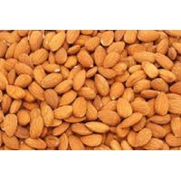 almonds nuts ,Apricot Kernels ,Pine nuts, Pecan nuts
