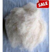 cashmere fiber raw thumbnail image