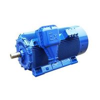 High voltage ATEX motors