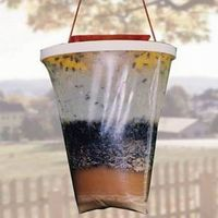 Red top fly trap eco-friendly fly trap