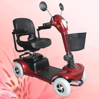 Electric Scooter YH1031