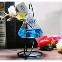 clear glass vase/hanging glass terrarium