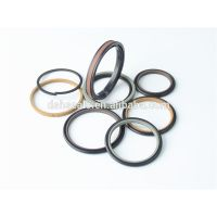 DSH seals hyraulic cylinder seal kit