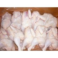 High Quality Frozen Premium Grade A Halal Whole Chicken And Chicken Parts thumbnail image