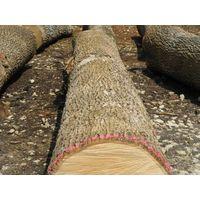Ash 4sc logs