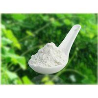 Top quality amorphophallus Konjac Jelly Powder, Konjac Gum